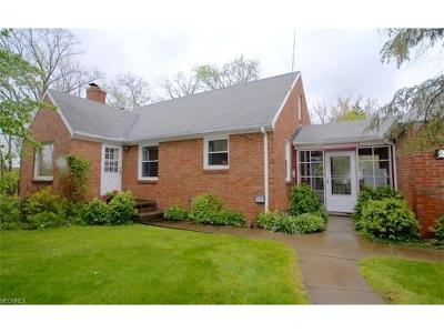 Oakwood Village Single Family Home For Sale: 26284 Solon Rd