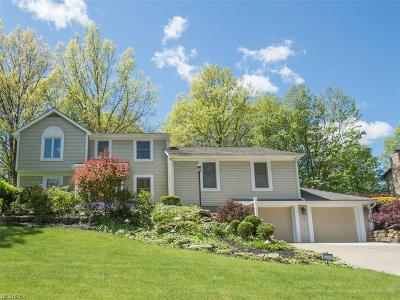 Canfield Single Family Home For Sale: 510 Stoneybrook Ln