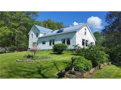 Geauga County Single Family Home For Sale: 16470 Farmington Rd