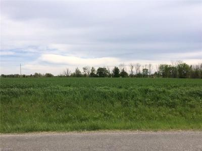 Litchfield Residential Lots & Land For Sale: S/L#1 Stone Rd