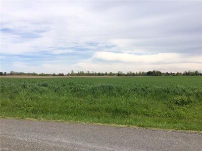 Litchfield Residential Lots & Land For Sale: S/L#6 Stone Rd