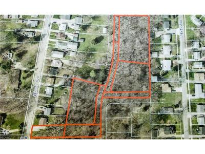 Painesville Residential Lots & Land For Sale: Skinner Ave
