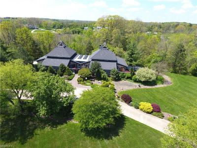 Summit County Single Family Home For Sale: 2995 Round Hill Rd