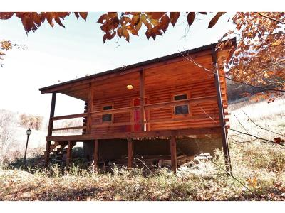 Guernsey County Single Family Home For Sale: 74724 Palmer Rd
