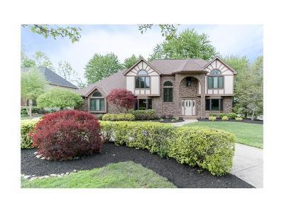 Westlake Single Family Home For Sale: 30934 Riviera Ln