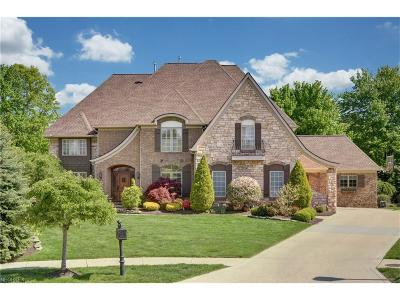 Westlake Single Family Home For Sale: 1991 Clarendon Ct
