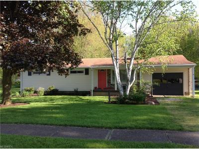Single Family Home For Sale: 376 West Virginia Ave