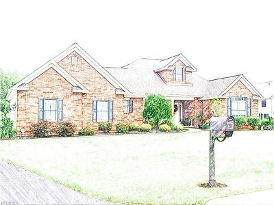 Canfield Single Family Home For Sale: 4834 My Way