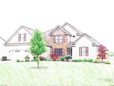 Canfield Single Family Home For Sale: 4817 My Way