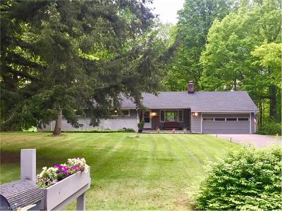 Chagrin Falls Single Family Home For Sale: 115 Leaview Ln