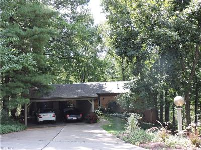 Marietta Single Family Home For Sale: 114 Meadow Ln