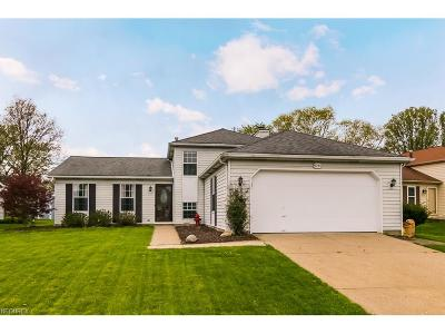 Olmsted Falls Single Family Home For Sale: 9740 Tannery Way