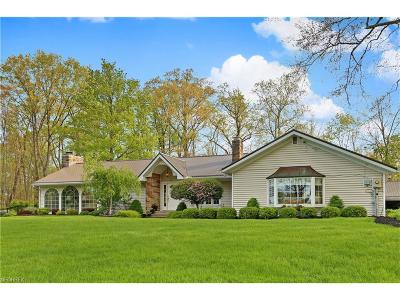 Chagrin Falls Single Family Home For Sale: 544 Falls Rd