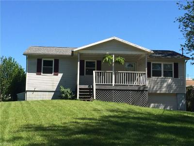 Williamstown Single Family Home For Sale: 300 Woodview Cir