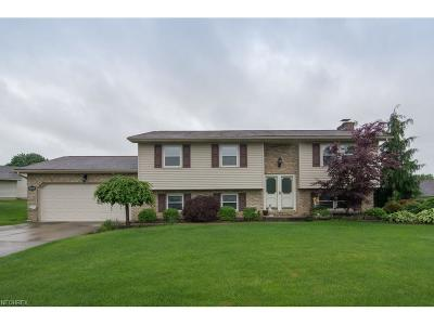 Boardman Single Family Home For Sale: 459 Garver