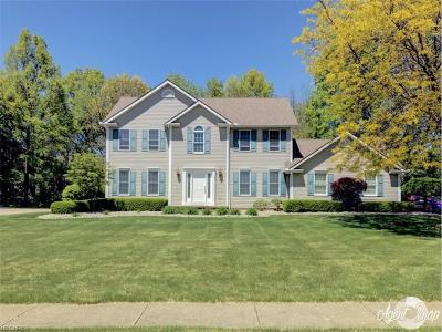 Canfield Single Family Home For Sale: 560 Neff Dr