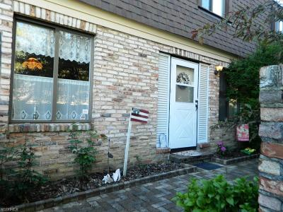 Painesville Township Condo/Townhouse For Sale: 1651 Mentor Ave #1205