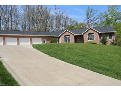 North Royalton Single Family Home For Sale: 5600 Wiltshire Rd