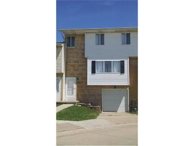 Painesville Condo/Townhouse For Sale: 990 Cornell Ct