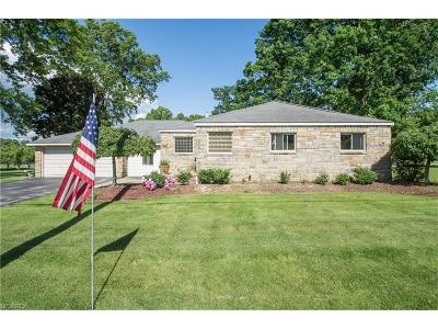 Canfield Single Family Home For Sale: 4372 South Raccoon