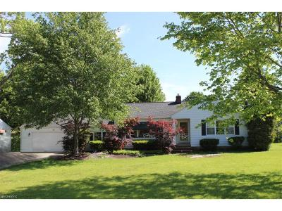 Summit County Single Family Home For Sale: 189 Boston Mills Rd