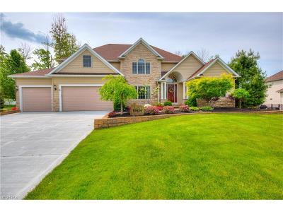Concord Single Family Home For Sale: 10634 Nobhill Ln