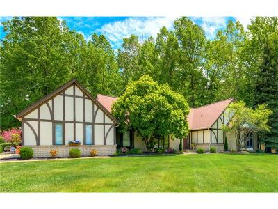 Willoughby Hills Single Family Home For Sale: 2883 Lamplight Ln