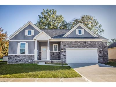 Seven Hills Single Family Home For Sale: 2560 Voyager Cir