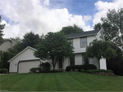 Youngstown Single Family Home For Sale: 6441 South Timberidge Dr