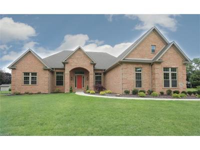 Boardman Single Family Home For Sale: 7391 Eagle Trace