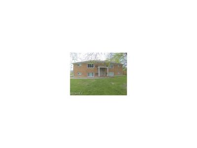 Youngstown Multi Family Home For Sale: 909 Cook Ave