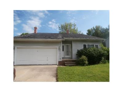 Maple Heights Single Family Home For Sale: 15377 Longvale Ave