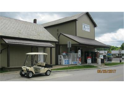 Guernsey County Commercial For Sale: 195 Pike St
