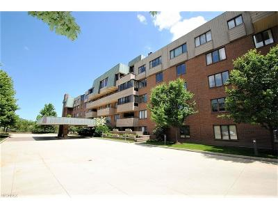 Lyndhurst Condo/Townhouse For Sale: 5200 Three Village Dr #3K