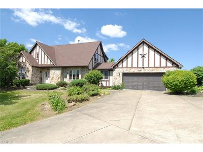 Licking County Single Family Home For Sale: 9450 Mulberry Rd