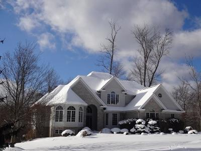 Chagrin Falls Single Family Home For Sale: 17460 Deepview Dr