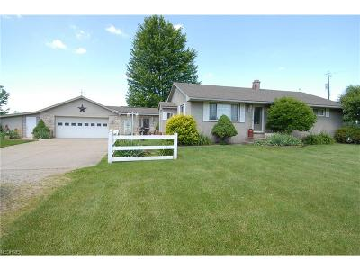 Licking County Single Family Home For Sale: 10456 Rankin Rd