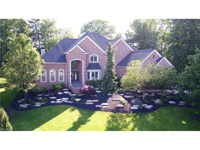 Brecksville Single Family Home For Sale: 4725 Maidstone Dr