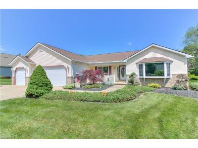 Mentor Single Family Home For Sale: 10005 Stone Hollow Rd