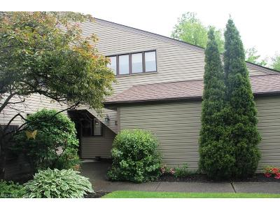 Chagrin Falls Condo/Townhouse For Sale: 16565 Wren Rd #D