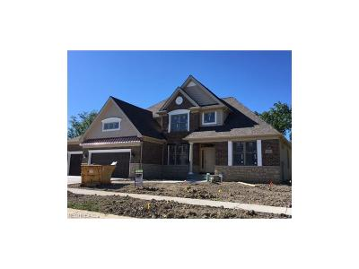 Avon Lake Single Family Home For Sale: 32502 Breakers Blvd