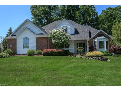 Single Family Home For Sale: 7970 Woods Edge Ct