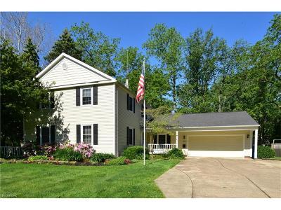 Bay Village Single Family Home For Sale: 356 Bradley Rd
