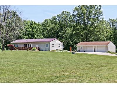 Ravenna Single Family Home For Sale: 5696 Wayland Rd