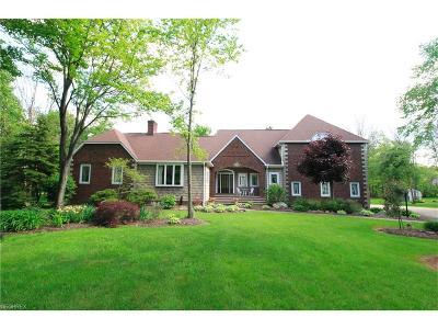 Chardon Single Family Home For Sale: 11305 Woodie Glen Dr