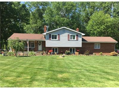 Warren Single Family Home For Sale: 3140 Weilacher Rd Southwest