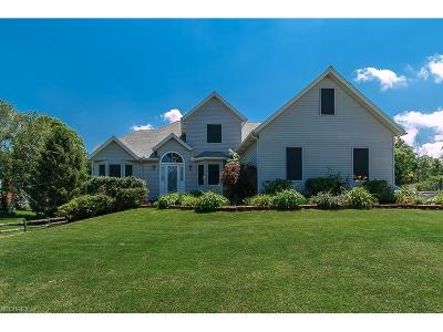 Concord Single Family Home For Sale: 7541 Kellogg Rd