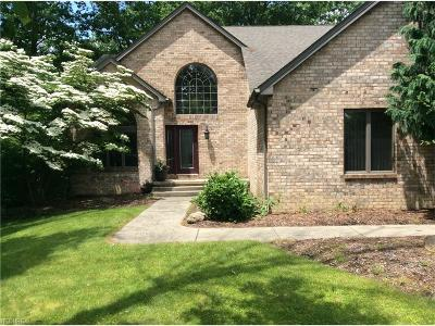 Youngstown Single Family Home For Sale: 370 Wilcox Rd