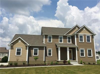Canfield Single Family Home For Sale: 7515 Orchard Park Dr