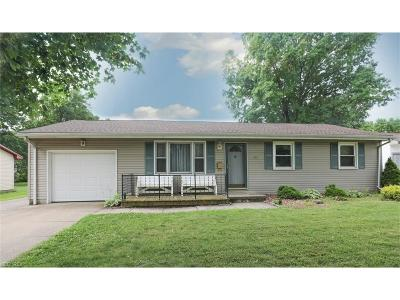 Boardman Single Family Home For Sale: 3209 Straley Ln